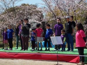 Sol 桜3